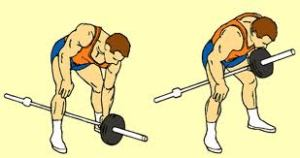 Standard Bent Over One Arm Long Bar Rowing